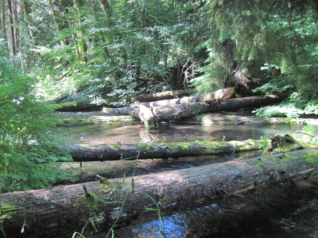 Horn Creek Below the culvert_lrge wood and gravels 7-25-14