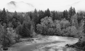 Little North Fork of the North Santiam