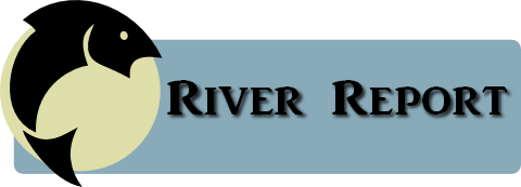 North Santiam River Report