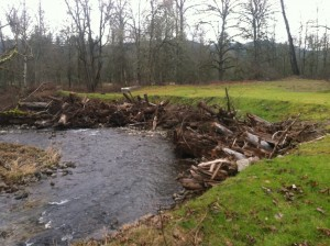 Snake and Deford Creek Restoration Project