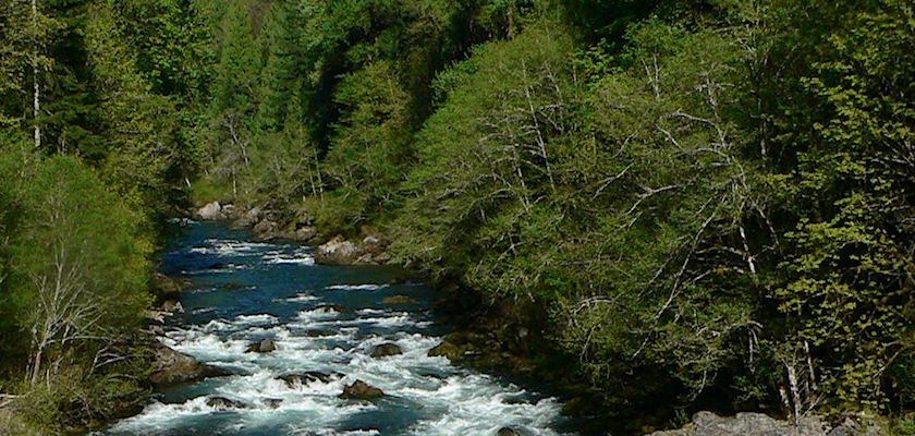 North Santiam River at Niagara